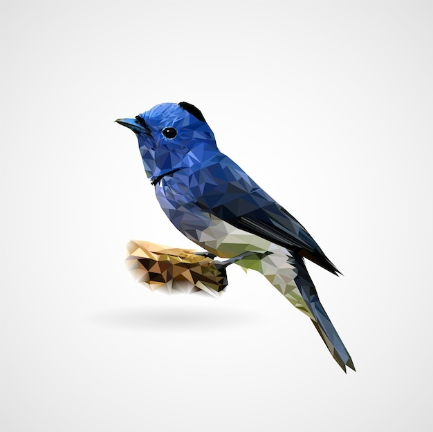Colorful polygonal bird