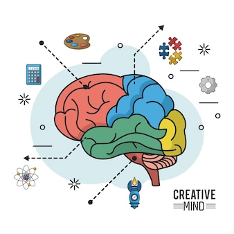 Colorful poster of creative mind with different parts of brain