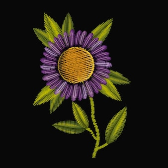 Colorful purple daisy flower