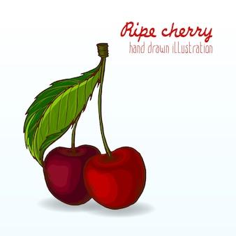 Красочные спелые и вкусные фрукты.