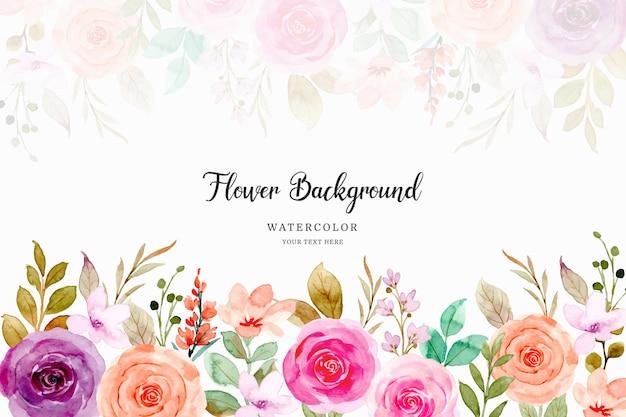 수채화와 화려한 장미 꽃 배경