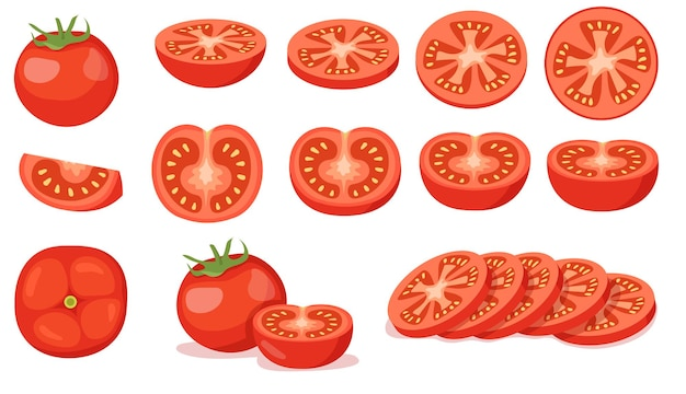 Colorful set of cut and full red tomatoes. cartoon illustration