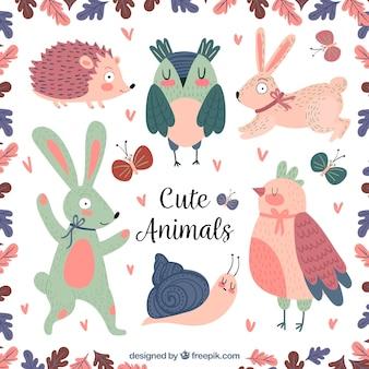 귀여운 동물의 화려한 세트