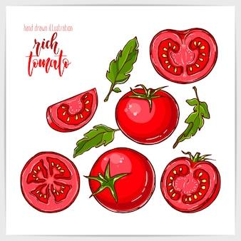 Красочный набор спелых и вкусных помидоров