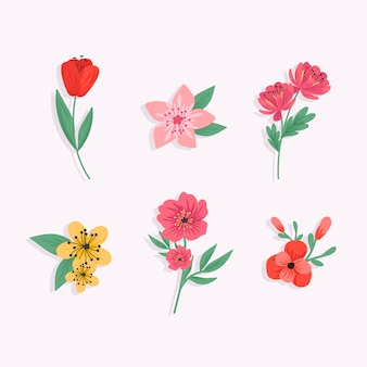 Colorful spring flower collection