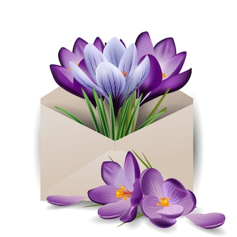 Colorful spring flowers crocuses in the envelope concept spring background the template vector