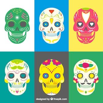 Colorful sugar skulls collection