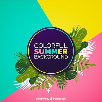 Colorful summer background with tropical leaves