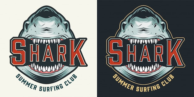 Colorful summer surfing club vintage emblem