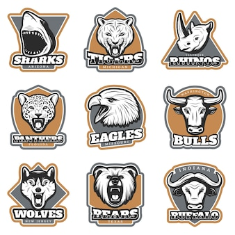 Colorful team sport animals logotypes set