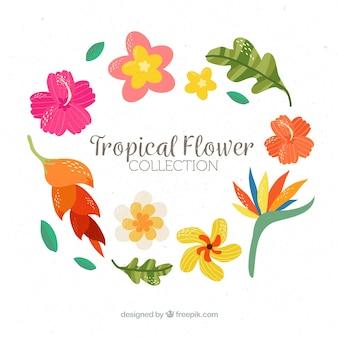 잎과 꽃으로 화려한 열 대 배경