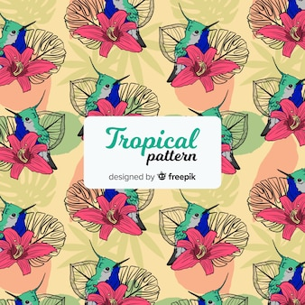 コリブリと花のカラフルな熱帯の柄