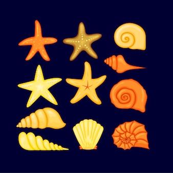 カラフルなトロピカルシェル水中アイコンは、海の貝、イラストのフレームを設定します。貝殻と海の星の夏のコンセプト。ラウンド構成、ヒトデ、自然水生。図。