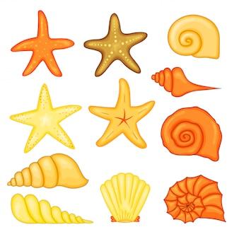 Красочные тропические раковины подводный набор морских раковин, векторная иллюстрация