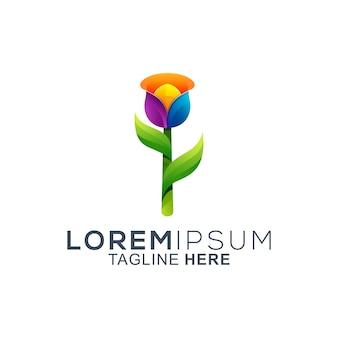Colorful tulip flower logo design