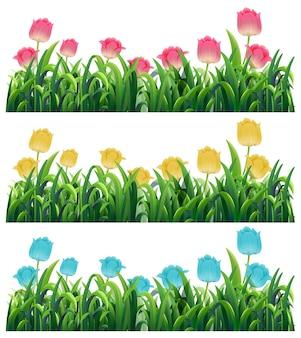 庭にあるカラフルなチューリップの花