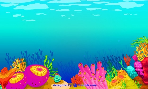 Colorful underwater life