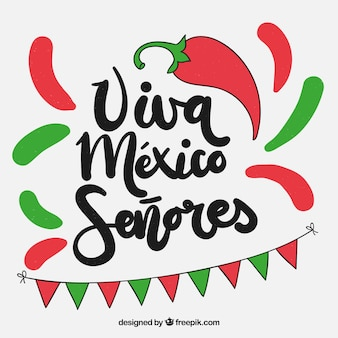 Colorful viva mexico background