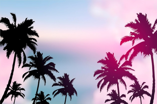 Colorful wallpaper with palm silhouettes concept