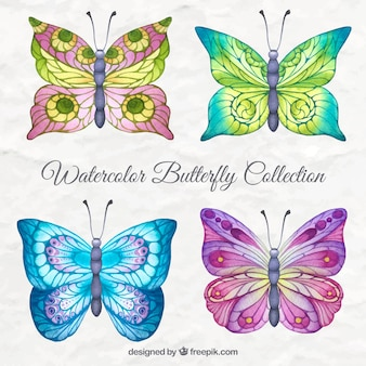 Colorful watercolor butterfly collection