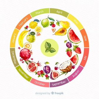 Colorful watercolor wheel of seasonal vegetables and fruits