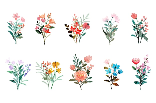 Colorful wild floral bouquet collection with watercolor