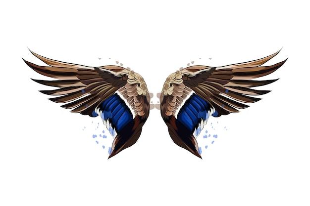 水彩画のスプラッシュからのカラフルな翼、色付きの描画、リアル。