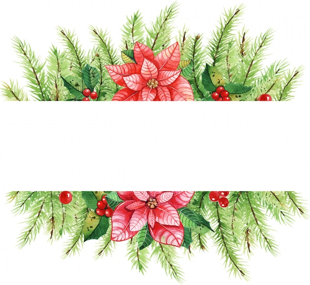 Colorfull новогодняя рамка с акварельными элементами. пуансеттия цветы, листья, шишки.