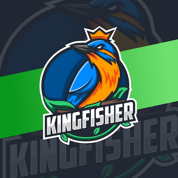 Colorfull kingfisher bird mascot logo design