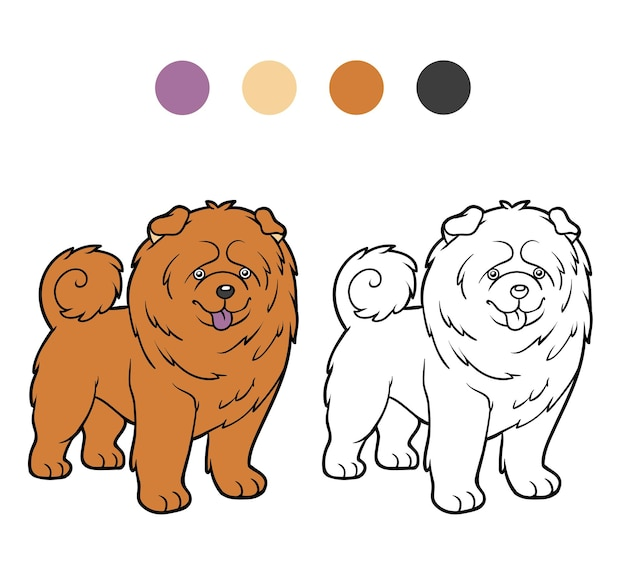 Coloring book for children dog breeds chow chow
