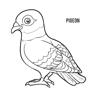 Coloring book for children, pigeon