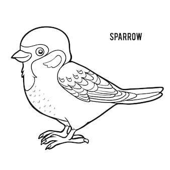 Coloring book for children, sparrow