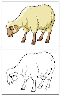 Coloring book cute sheep