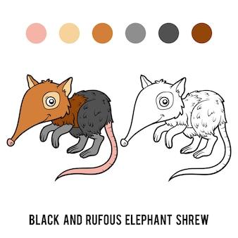 Книжка-раскраска для детей, черная и рыжая землеройка