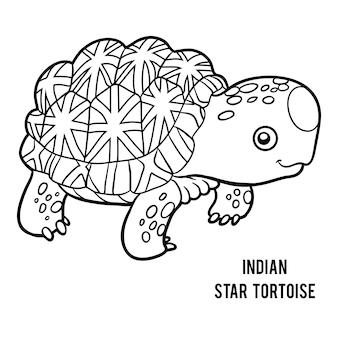 어린이를 위한 색칠하기 책, 인도 별 거북이
