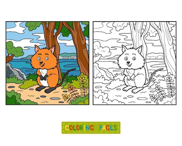 아이들을 위한 컬러링북, quokka