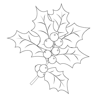 Coloring book page for adults and children. christmas holly berry branch with leaves. vector illustration.