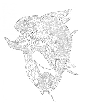 Coloring book page with chameleon on the branch