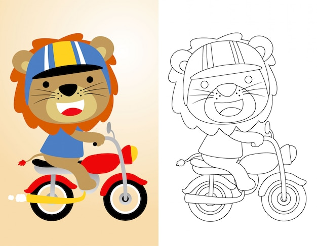 Coloring book or page with cute lion riding motorcycle
