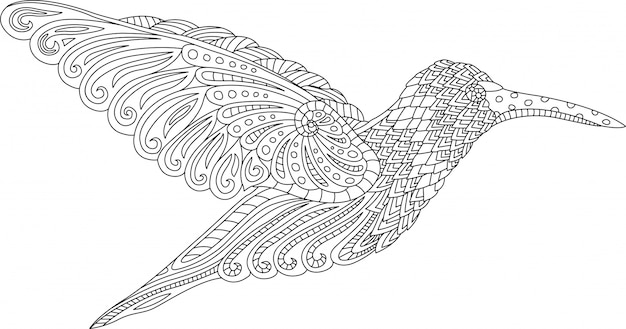 Coloring book page with hummingbird on white background