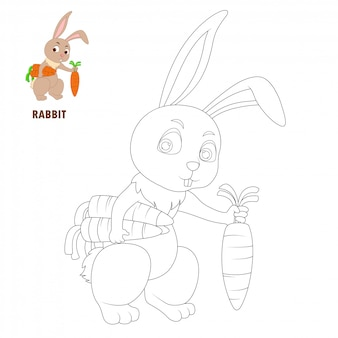 Coloring book pages rabbit cartoon