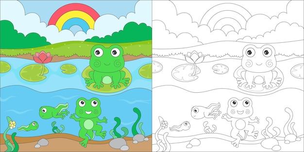 Жизненный цикл лягушки-раскраски