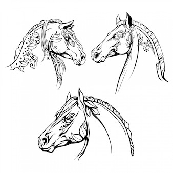 Coloring page 3 portraits of horses