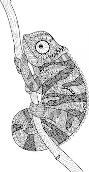 Coloring page of chameleon lizard