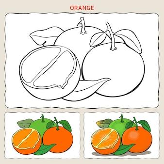 2つのサンプルの着色によるオレンジの着色ページ