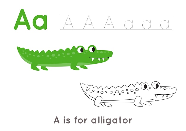 かわいい漫画のワニのぬりえ。文字aのアルファベットトレースワークシート。子供のための手書きの練習。