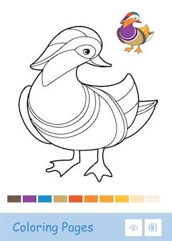 무색 컨투어 오리 그림 흰색 배경에 고립입니다. 조류 관련 유치원 어린이 색칠하기 책 삽화 및 발달 활동.