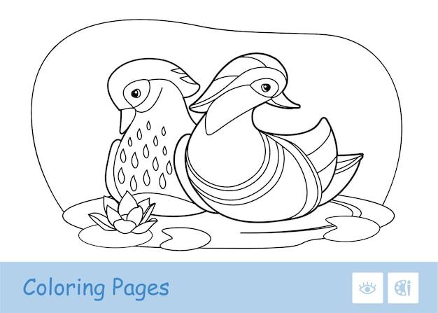 白い背景で隔離の森の川に浮かぶ無色の輪郭のアヒルのイラスト。本のイラストや発達活動を着色する鳥関連の就学前の子供たち。