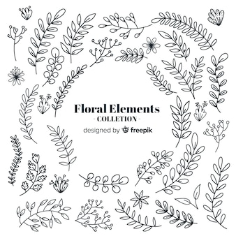 Colorless hand drawn floral decorative elements