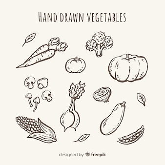 Colorless hand drawn fruit and vegetable set